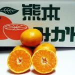 hinosayaka5kg-wakeari
