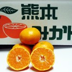 sirakawa3kg-mini